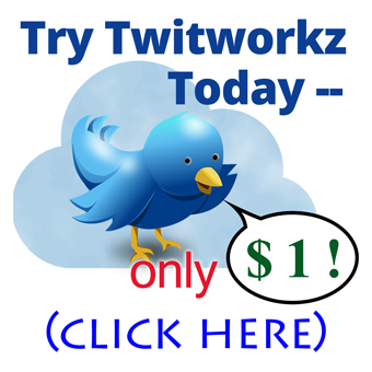 Twitworkz Best Follower Builder