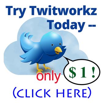Twitworkz Best Follower Builder